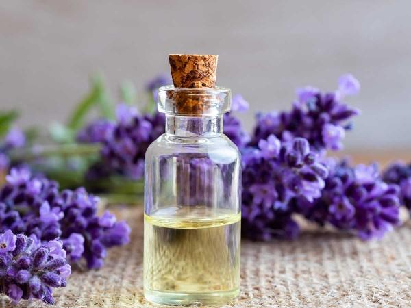 Beruhigendes-Lavendeloel-selbst-herstellen