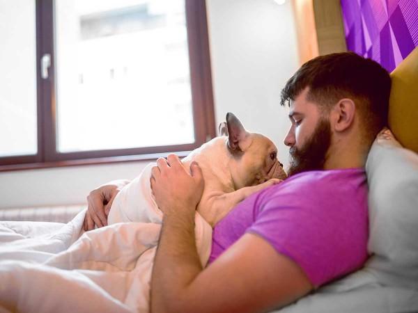 Junger-moderner-Mann-kuschelt-mit-Hund-im-Bett