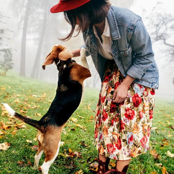Junge-Frau-mit-Beagle-auf-herbstlicher-Wiese