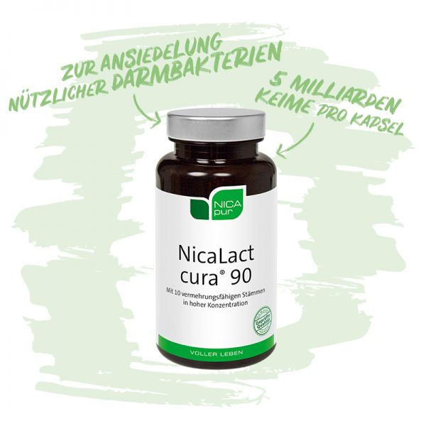 NicaLact cura® 90 - Zur Ansiedelung nützlicher Darmbakterien - 5 Milliarden Keime pro Kapsel-Reinsubstanz, Glutenfrei, Laktosefrei