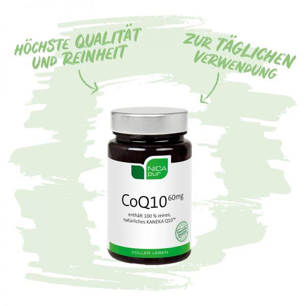 Coenzym Q10 aus Hefefermentation- Für deine Energiegewinnung