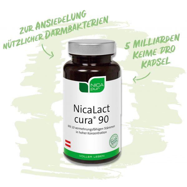 NicaLact cura® 90 - Zur Ansiedelung nützlicher Darmbakterien - 5 Milliarden Keime pro Kapsel
